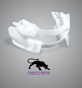 ABC_Panthera